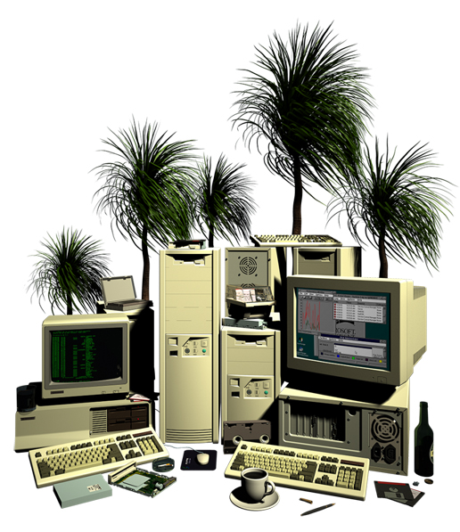 web-paradise-884x1024