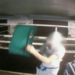 Lampaiden mätkiminen hyväksyttävää vain jos se mahdollistaa halvemman lihan