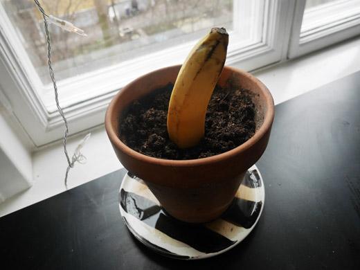 BananPeak5