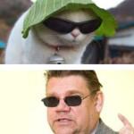 Kolme poliitikkoa jotka näyttävät kissoilta